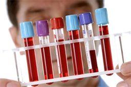Анализ крови пса 30